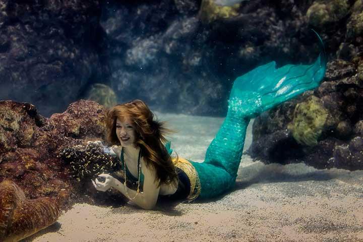 mermaids and exploring sea life are possible in denver aquarium