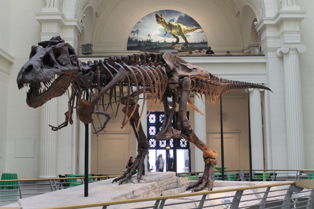 Chicago CityPASS alows you to get up close and personal with the world's largest dinosaur