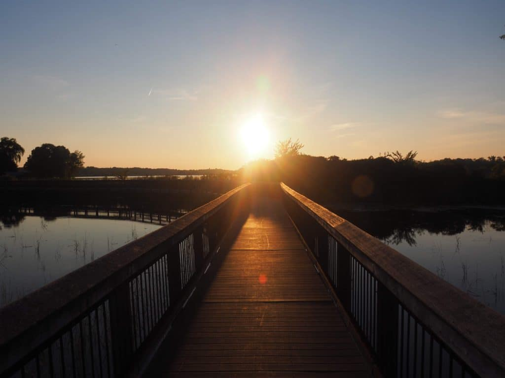 Grays Bay Dam Park