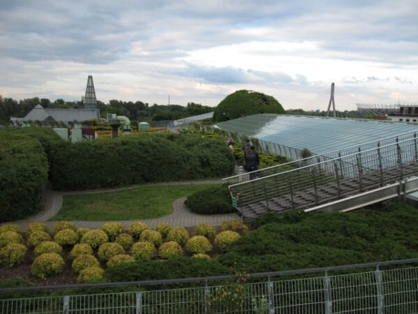 When comparing Warsaw vs Krakow, one thing certainly stands out: the University of Warsaw library rooftop garden.
