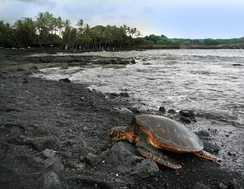 Dark sand beaches in Hawaii