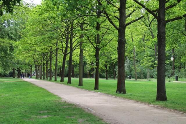 Trailblazer Park