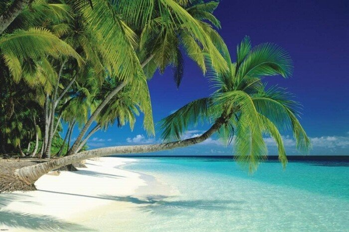 Maldive Morning Decorative Tropical Scenic Travel Photography Poster