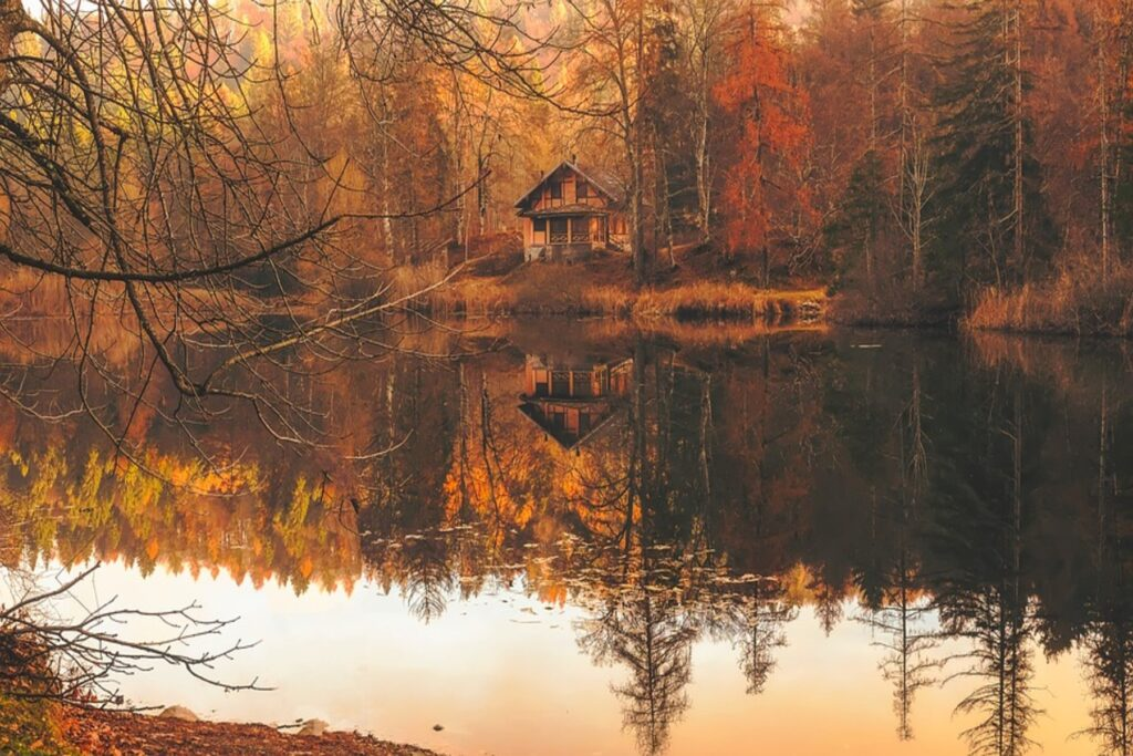 A lake and a cabin in the background