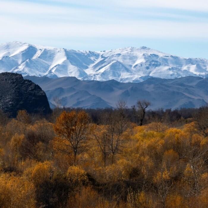 Mongolian winters