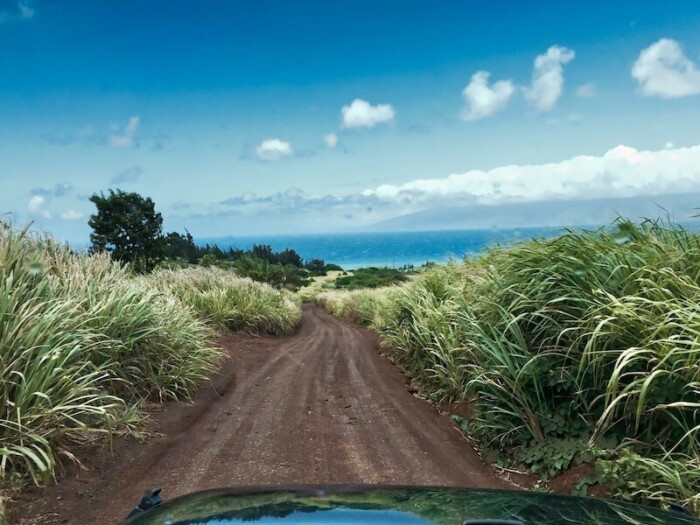 Hawaii Road Trip