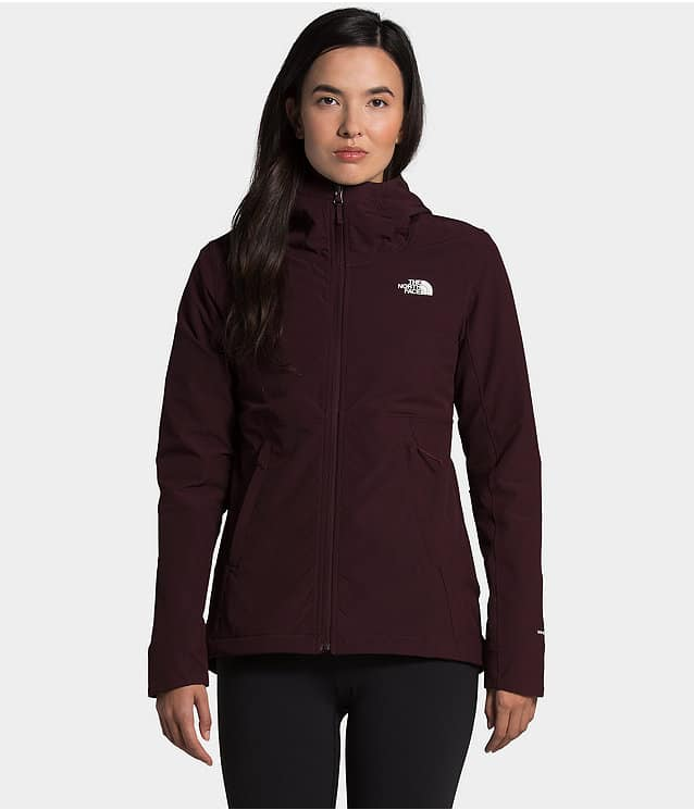 the north face model wearing hoodie