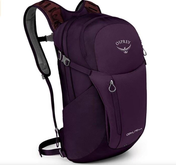 Osprey Daylite Plus Travel Backpack