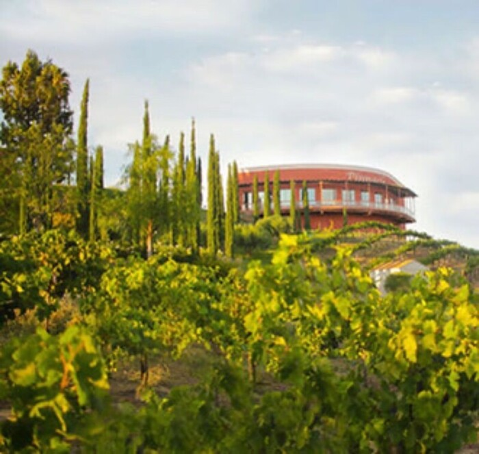Falkner Winery exterior overlooking vineyard