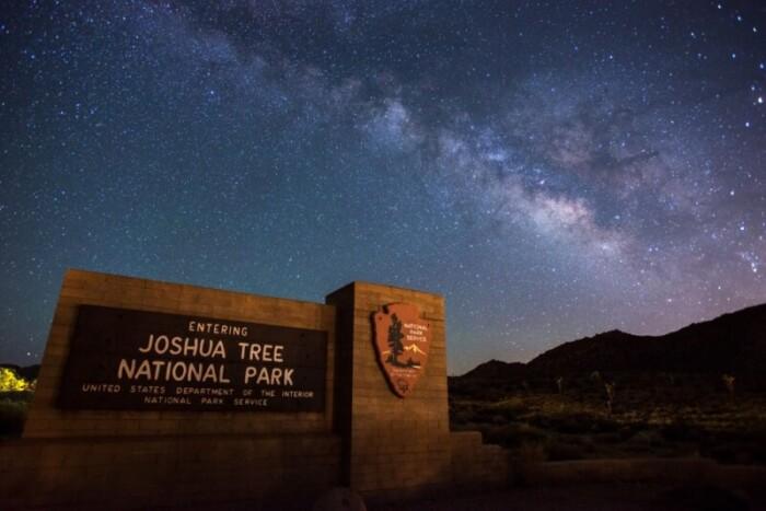 Joshua Tree Stargazing