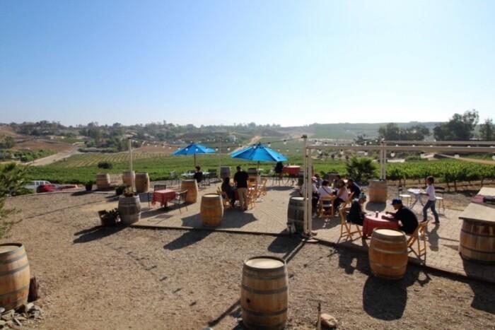 Vineyards from Vindemia Winery Tasting Patio