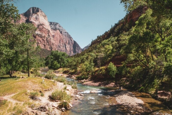 river in Zion national park