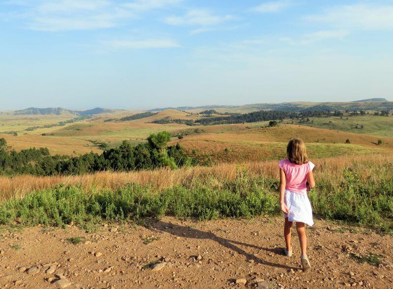 Fields of South Dakota