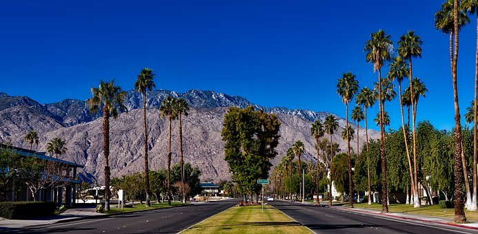 Palm Springs backdrop royalty free image