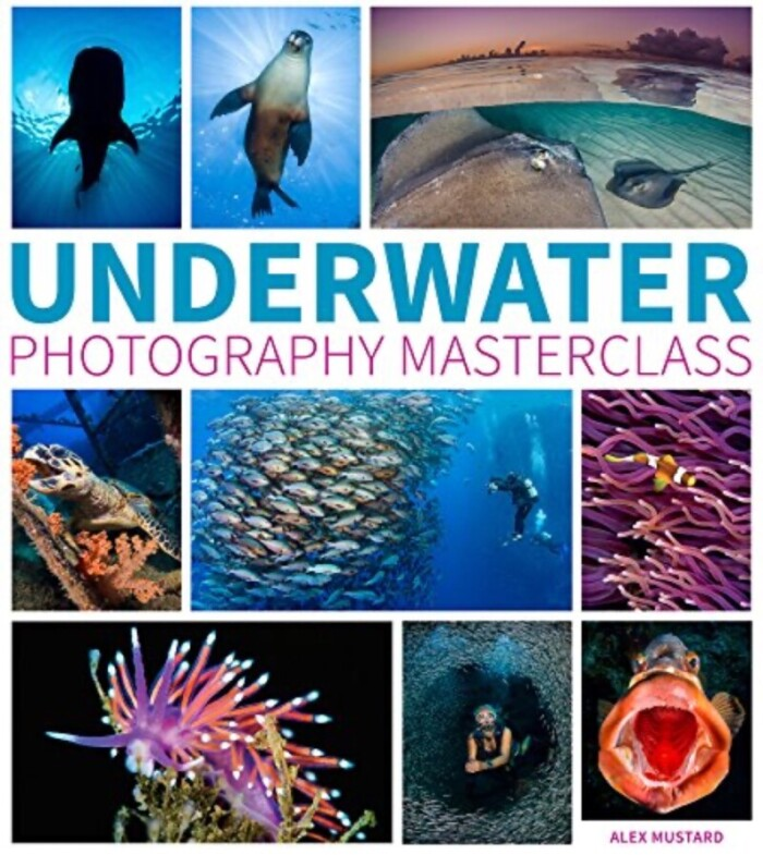 Book cover with a collage of underwater photography