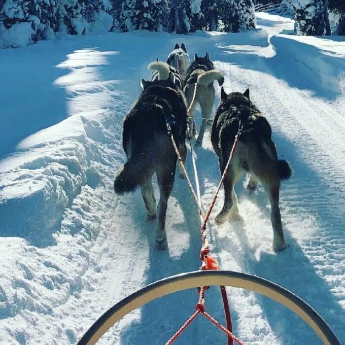Finland adventures