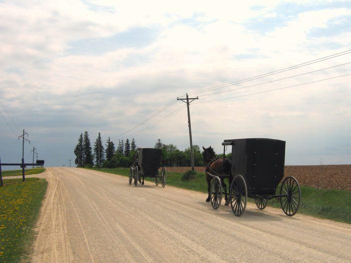 Amish Tours in Harmony Minnesota