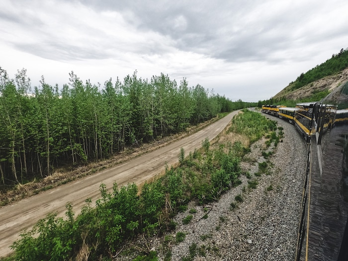 Alaska Railroad in Denali National Park