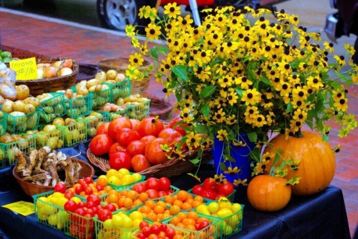Tomatoes and flowers