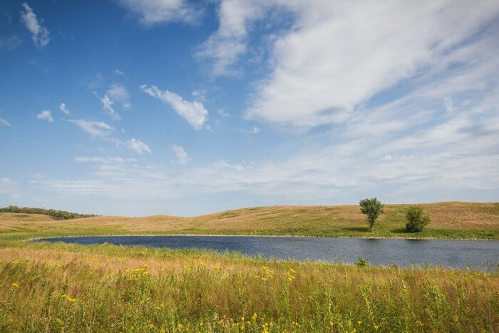 scenic view of the park with grass at the forefront and back, a partial view of the lakewater at  the middle