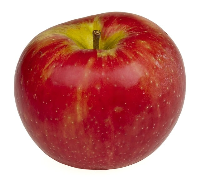 a single perfect honeycrisp apple