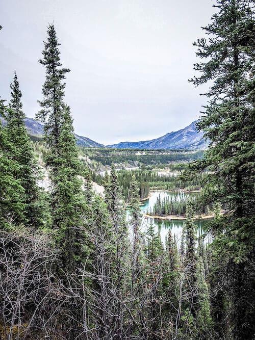 Horseshoe Lake Trail Denali Alaska