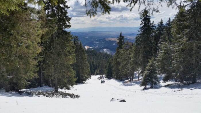 Coffee Mill Ski and Snowboard Area