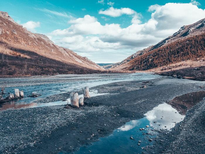 Savage River Trail Denali
