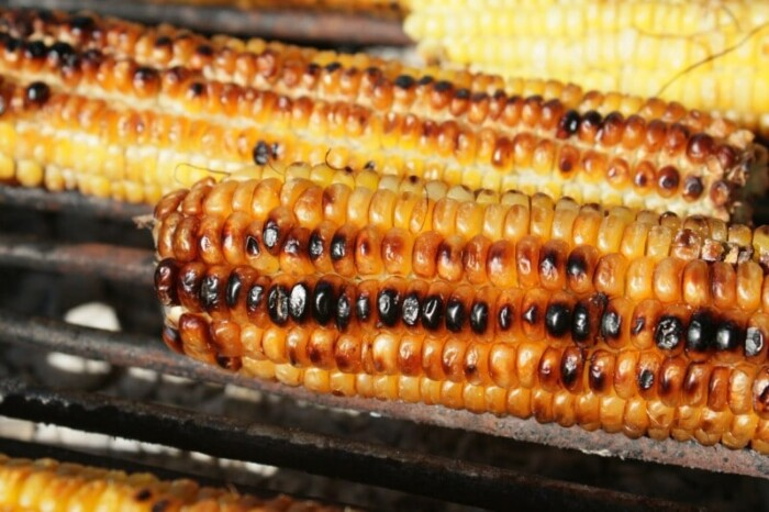 close up of barbequed corn