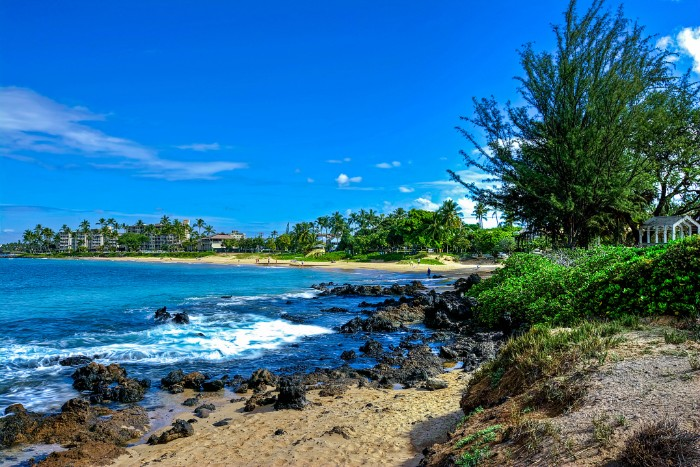 Maui without a car