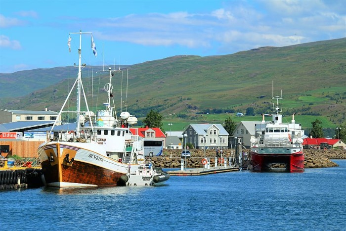 the-port-boats-iceland
