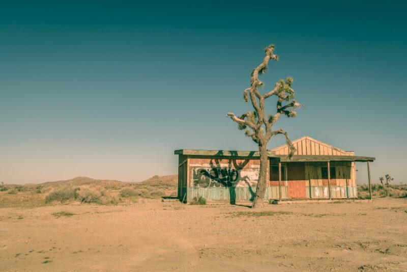 Best things to do in Mojave desert